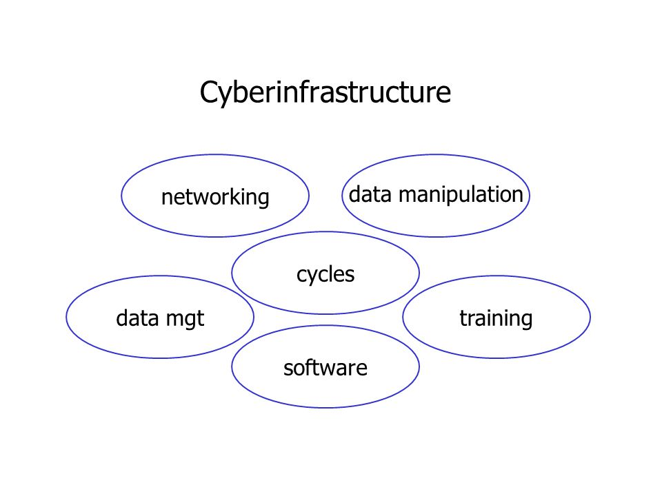 Cyberinfrastructure cyclesnetworkingdata mgttrainingsoftware data manipulation
