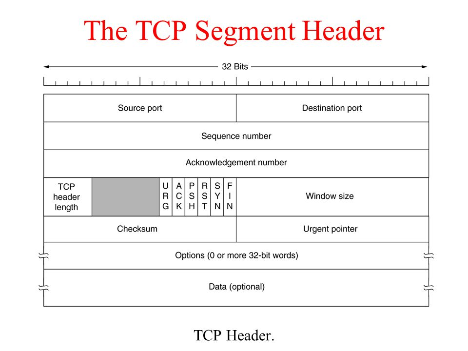 The TCP Segment Header TCP Header.