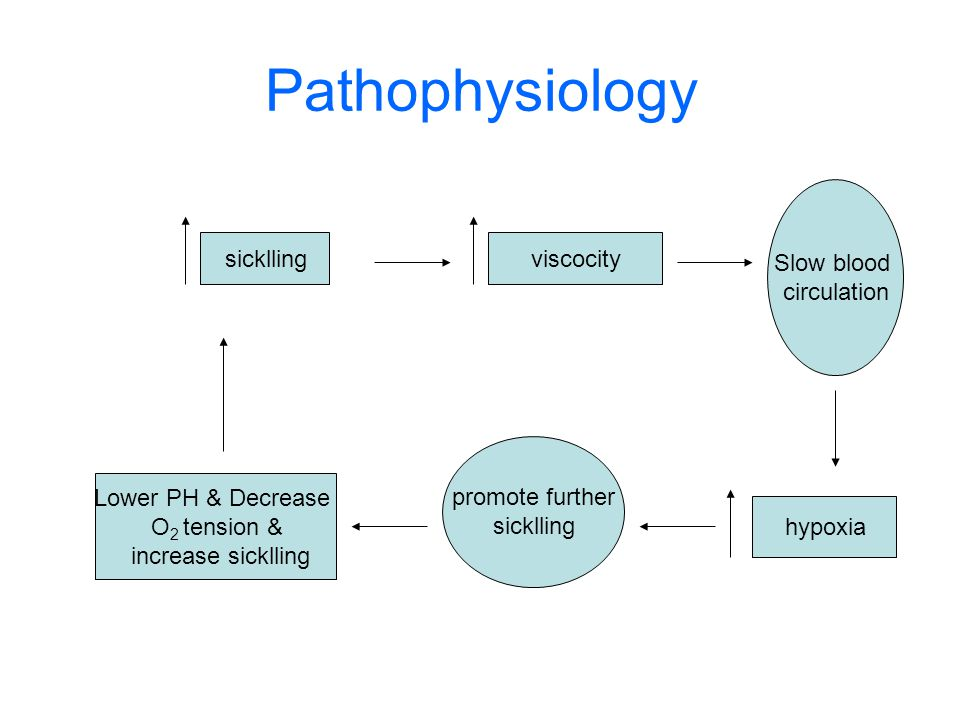 Pathophysiology sickllingviscocity Slow blood circulation hypoxia promote further sicklling Lower PH & Decrease O 2 tension & increase sicklling