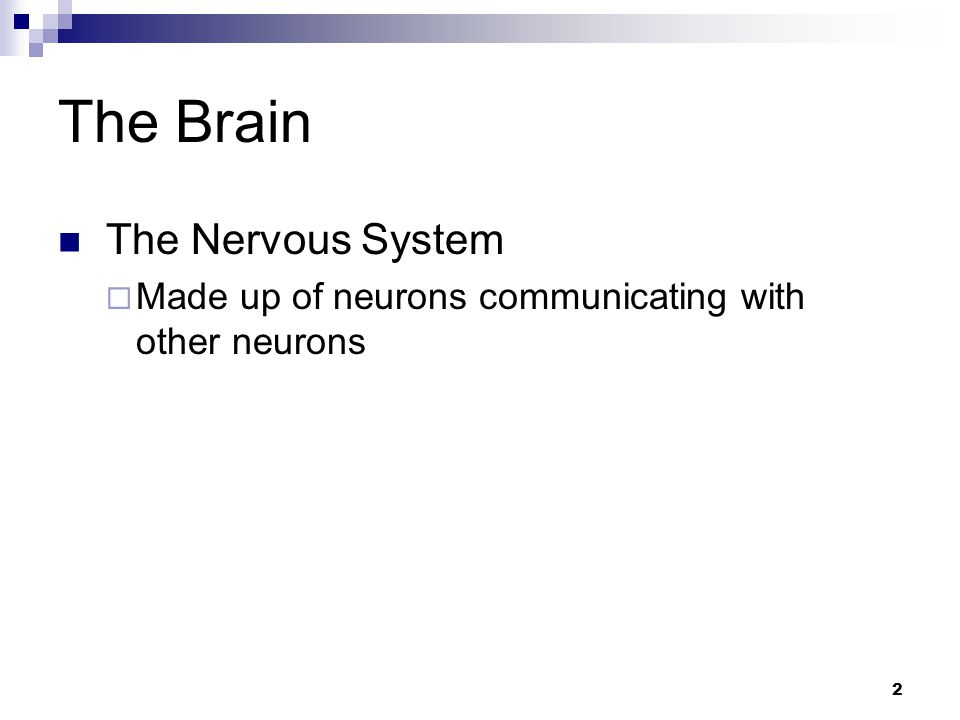 2 The Brain The Nervous System  Made up of neurons communicating with other neurons