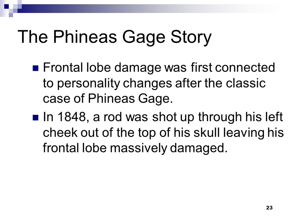 23 The Phineas Gage Story Frontal lobe damage was first connected to personality changes after the classic case of Phineas Gage.