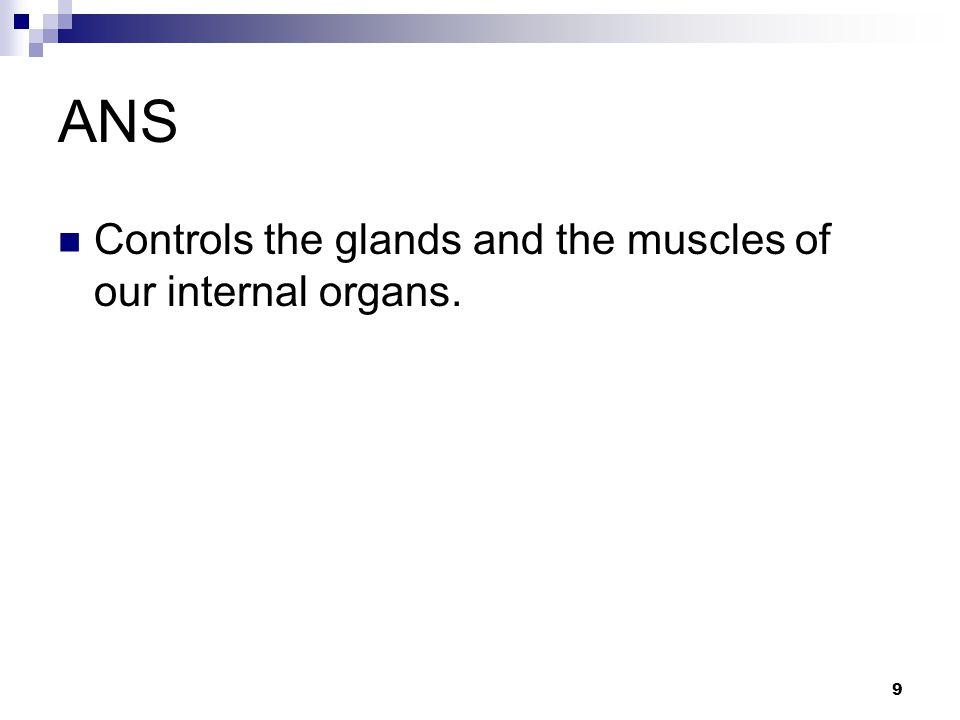 9 ANS Controls the glands and the muscles of our internal organs.