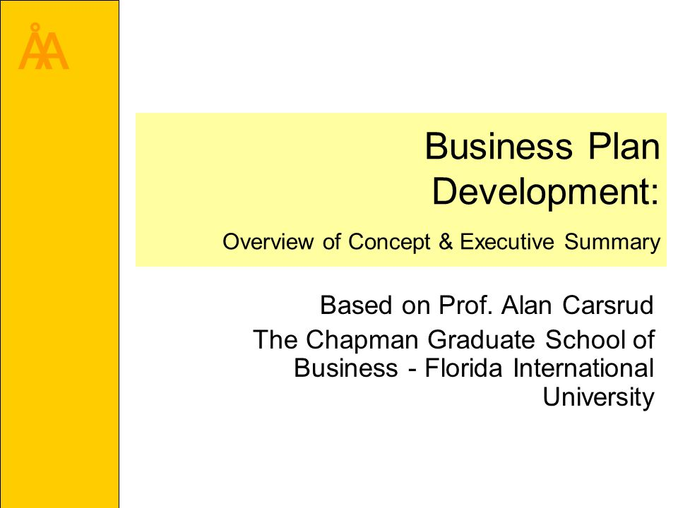 Åa business plan development overview of concept executive