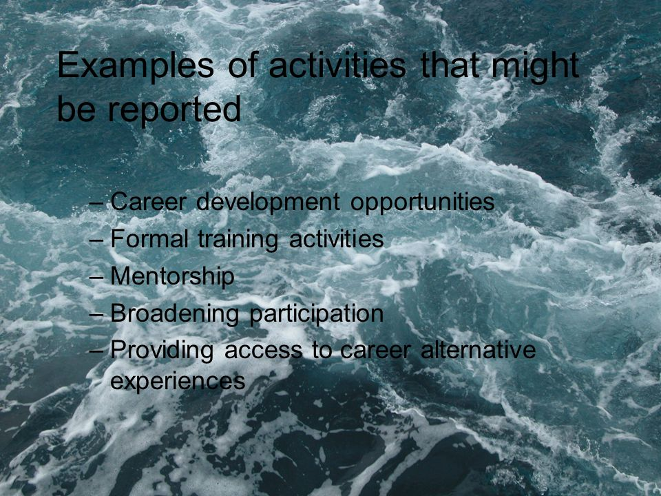 Examples of activities that might be reported –Career development opportunities –Formal training activities –Mentorship –Broadening participation –Providing access to career alternative experiences