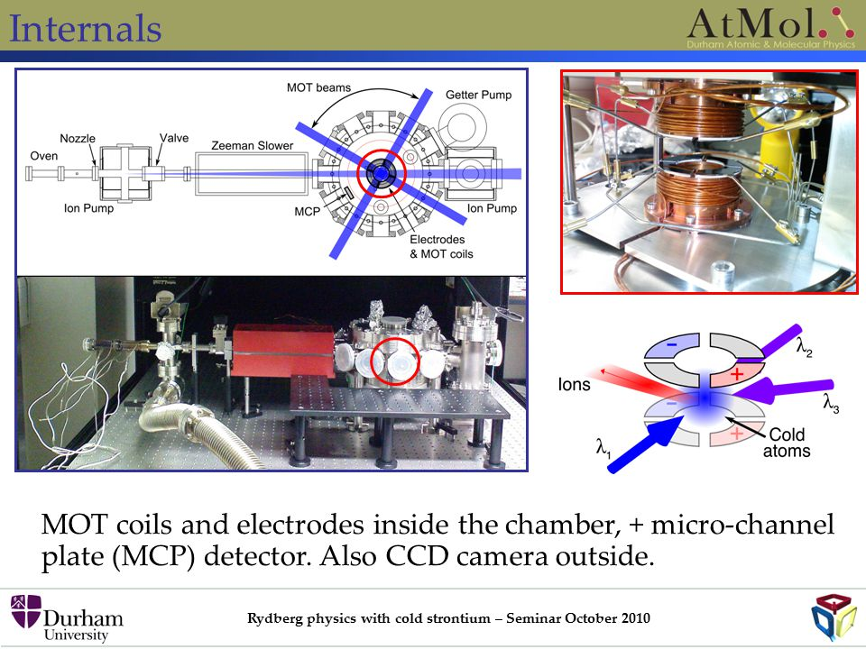 Rydberg physics with cold strontium – Seminar October 2010 Internals MOT coils and electrodes inside the chamber, + micro-channel plate (MCP) detector.