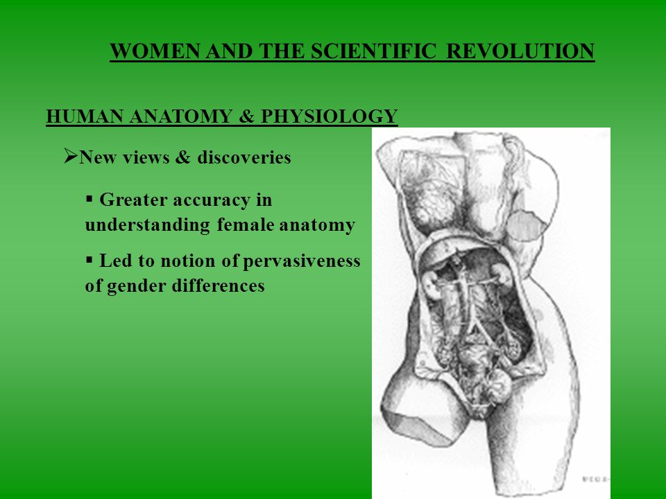 WOMEN AND THE SCIENTIFIC REVOLUTION. EFFECT ON WOMEN  Little ...