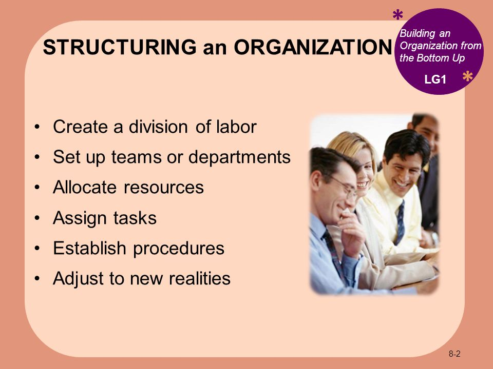 * * Building an Organization from the Bottom Up Create a division of labor Set up teams or departments Allocate resources Assign tasks Establish procedures Adjust to new realities STRUCTURING an ORGANIZATION LG1 8-2