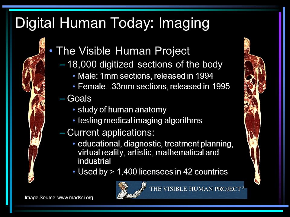 Towards A Digital Human Kathy Yelick Eecs Department Uc Berkeley
