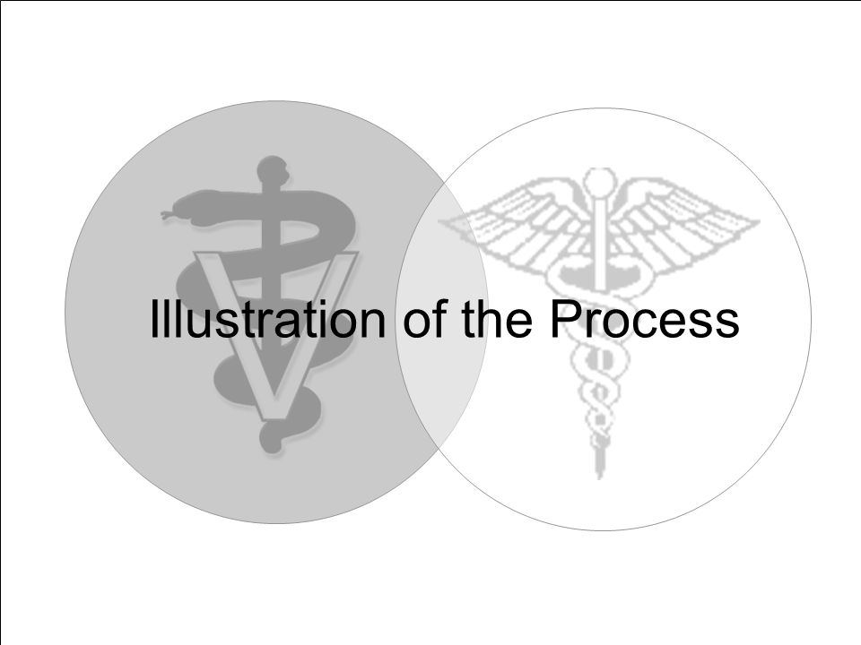 Illustration of the Process