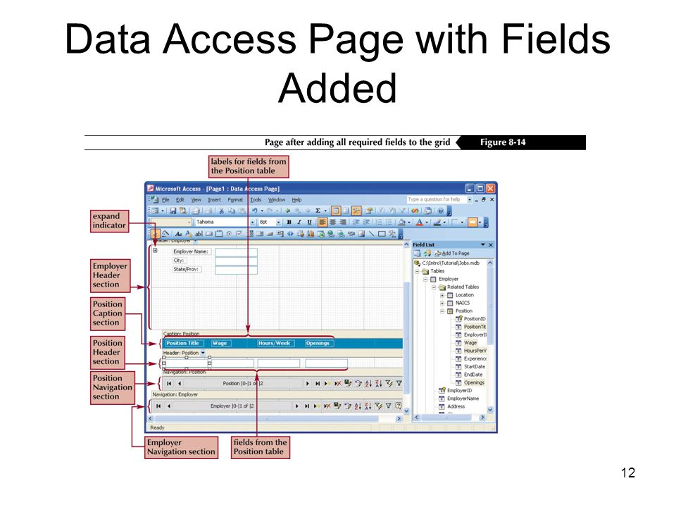 12 Data Access Page with Fields Added