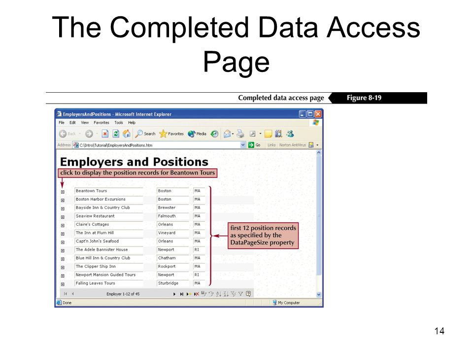14 The Completed Data Access Page