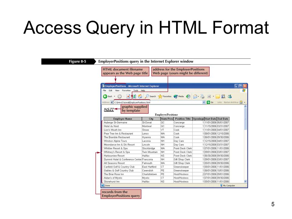 5 Access Query in HTML Format