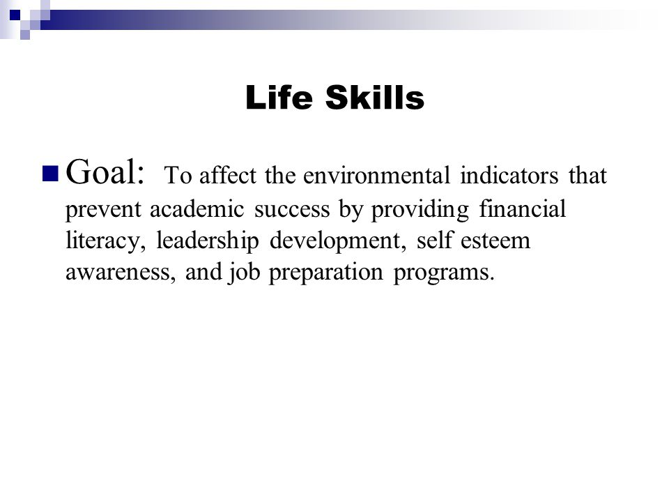 Life Skills Goal: To affect the environmental indicators that prevent academic success by providing financial literacy, leadership development, self esteem awareness, and job preparation programs.