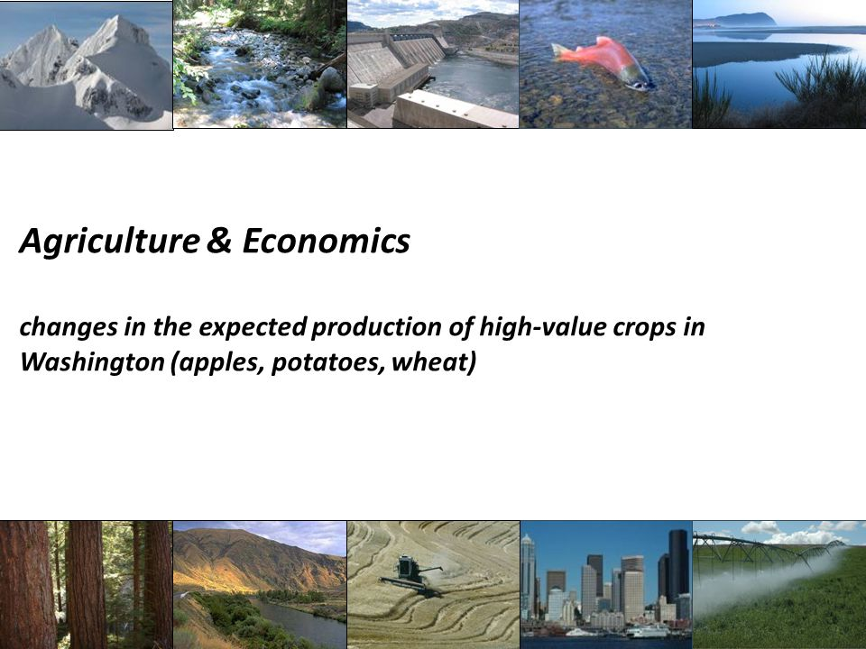 Agriculture & Economics changes in the expected production of high-value crops in Washington (apples, potatoes, wheat)