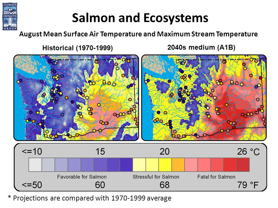Salmon and Ecosystems August Mean Surface Air Temperature and Maximum Stream Temperature Historical ( ) 2040s medium (A1B) * Projections are compared with average