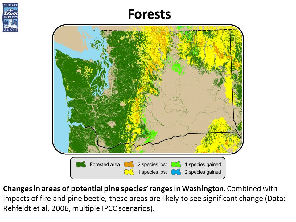 Forests Changes in areas of potential pine species' ranges in Washington.