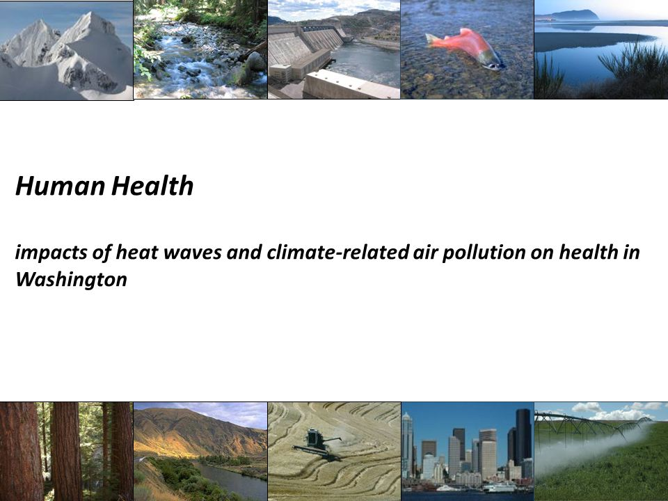 Human Health impacts of heat waves and climate-related air pollution on health in Washington