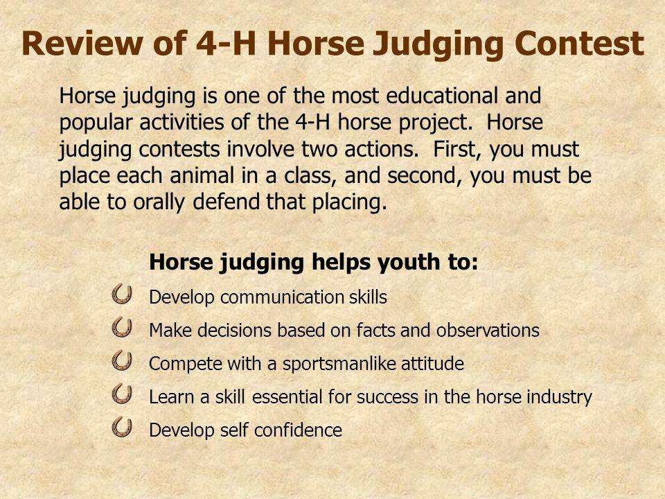 Source Basic Steps In Horse Judging V0a Msu Es Horse Judging