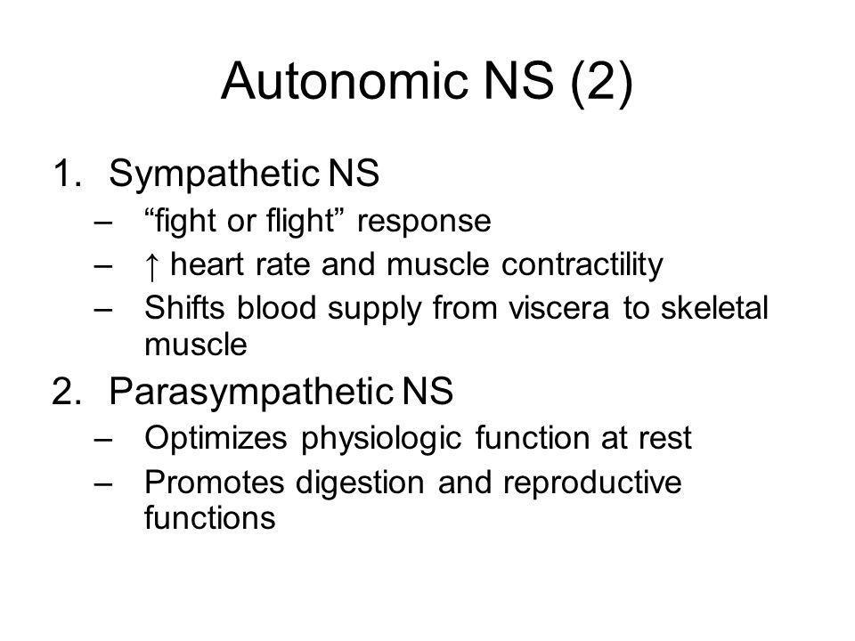 Autonomic NS (2) 1.Sympathetic NS – fight or flight response –↑ heart rate and muscle contractility –Shifts blood supply from viscera to skeletal muscle 2.Parasympathetic NS –Optimizes physiologic function at rest –Promotes digestion and reproductive functions