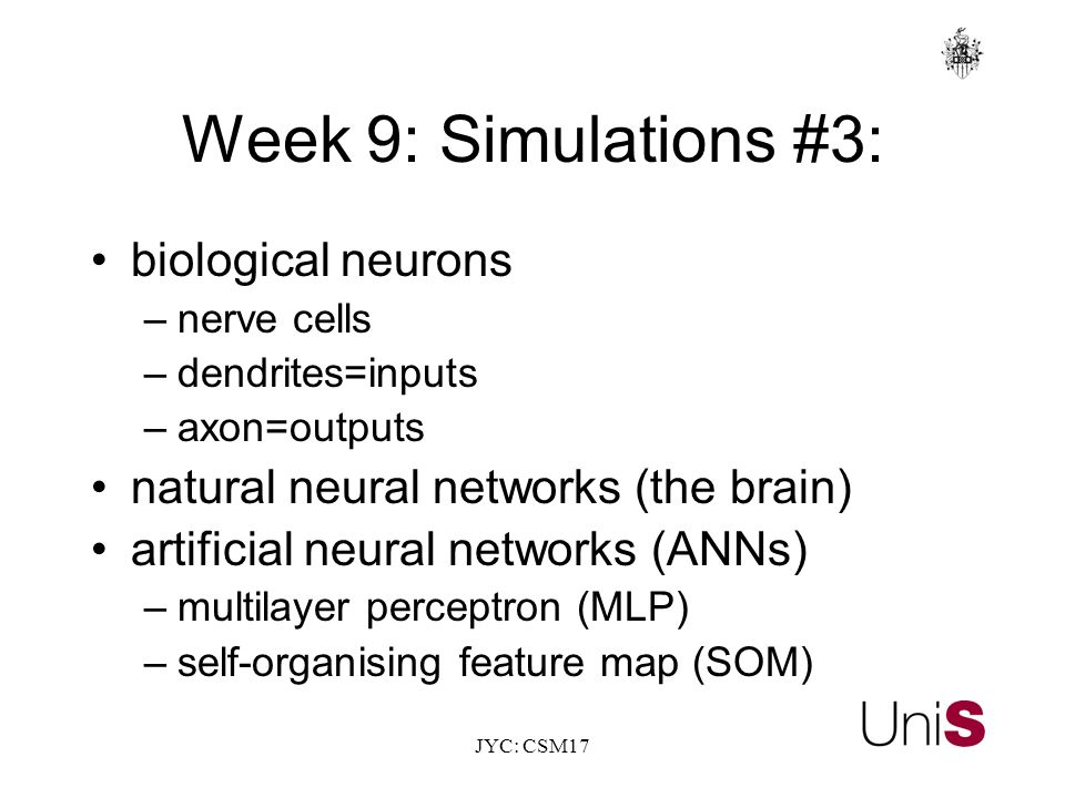 JYC: CSM17 Week 9: Simulations #3: biological neurons –nerve cells –dendrites=inputs –axon=outputs natural neural networks (the brain) artificial neural networks (ANNs) –multilayer perceptron (MLP) –self-organising feature map (SOM)