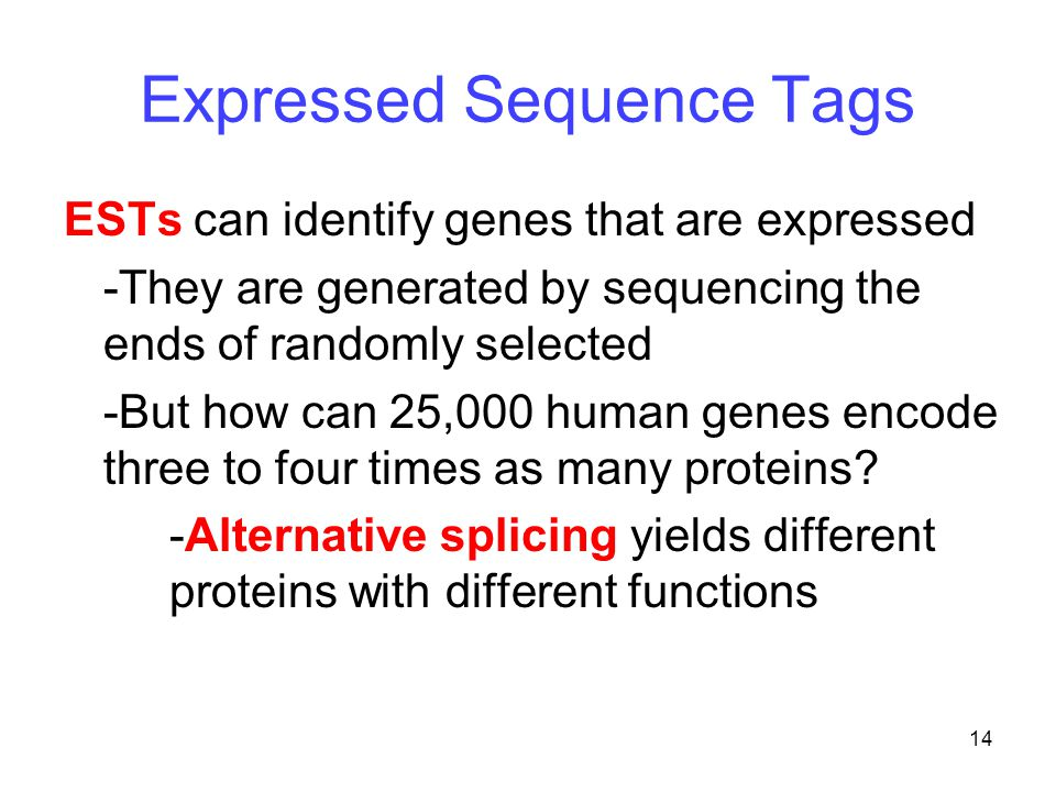 14 Expressed Sequence Tags ESTs can identify genes that are expressed -They are generated by sequencing the ends of randomly selected -But how can 25,000 human genes encode three to four times as many proteins.