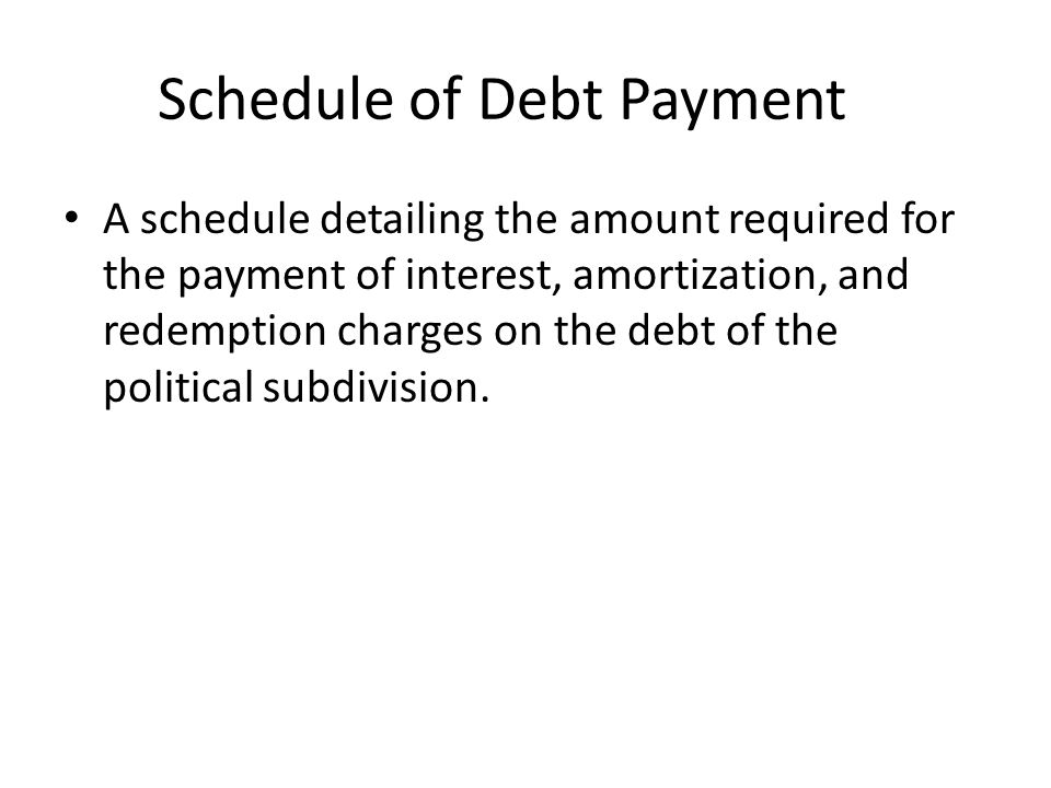 Schedule of Debt Payment A schedule detailing the amount required for the payment of interest, amortization, and redemption charges on the debt of the political subdivision.