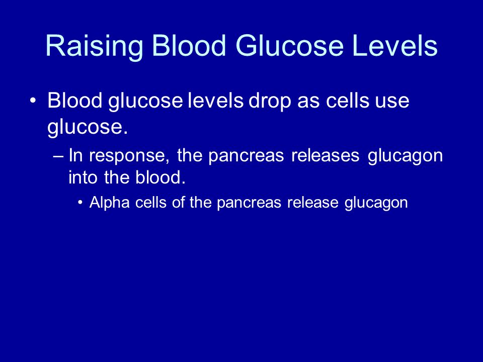 Raising Blood Glucose Levels Blood glucose levels drop as cells use glucose.