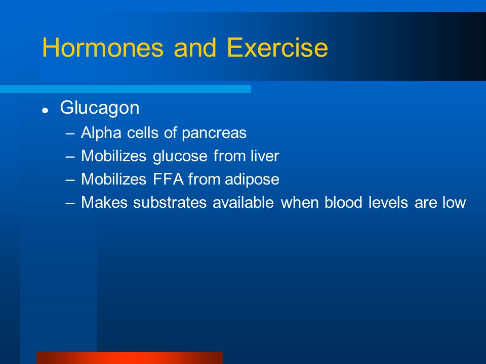 Hormones and Exercise Glucagon –Alpha cells of pancreas –Mobilizes glucose from liver –Mobilizes FFA from adipose –Makes substrates available when blood levels are low