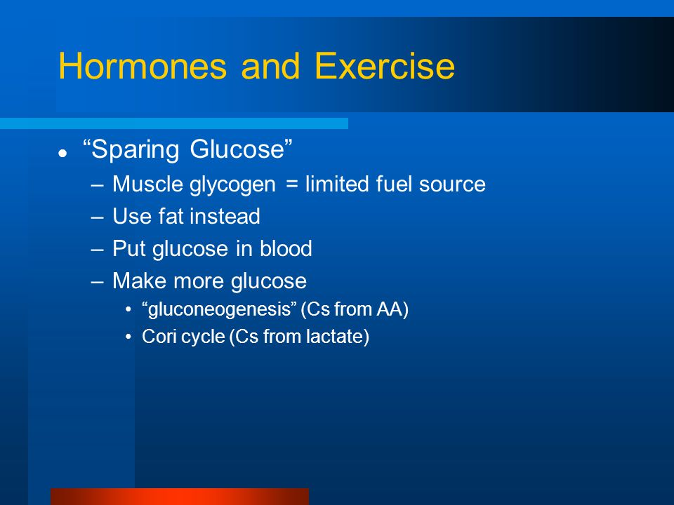 Hormones and Exercise Sparing Glucose –Muscle glycogen = limited fuel source –Use fat instead –Put glucose in blood –Make more glucose gluconeogenesis (Cs from AA) Cori cycle (Cs from lactate)