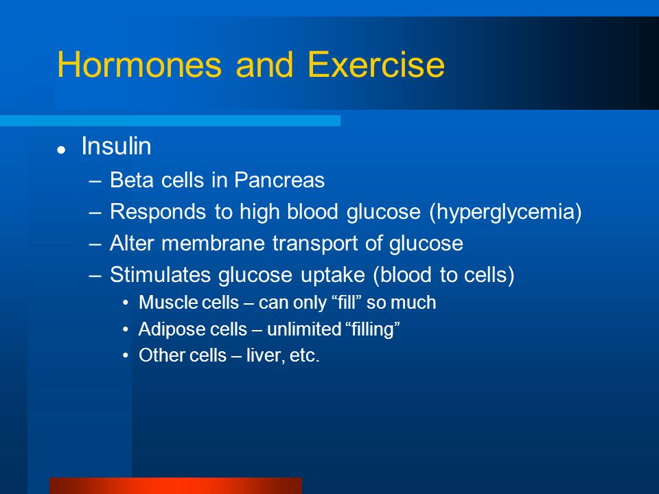 Hormones and Exercise Insulin –Beta cells in Pancreas –Responds to high blood glucose (hyperglycemia) –Alter membrane transport of glucose –Stimulates glucose uptake (blood to cells) Muscle cells – can only fill so much Adipose cells – unlimited filling Other cells – liver, etc.