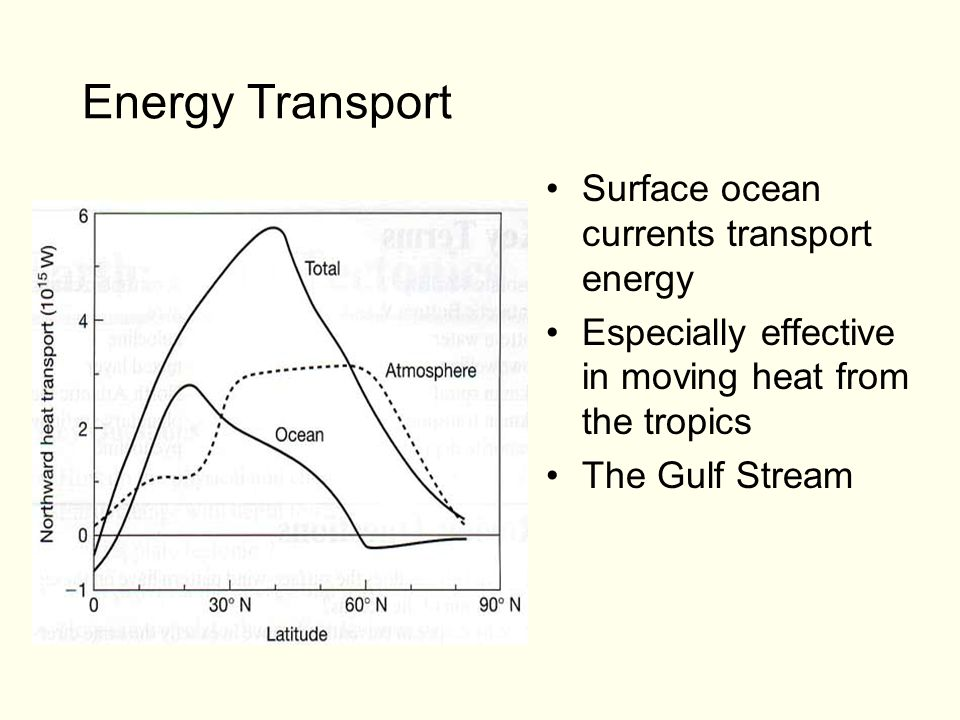 Energy Transport Surface ocean currents transport energy Especially effective in moving heat from the tropics The Gulf Stream