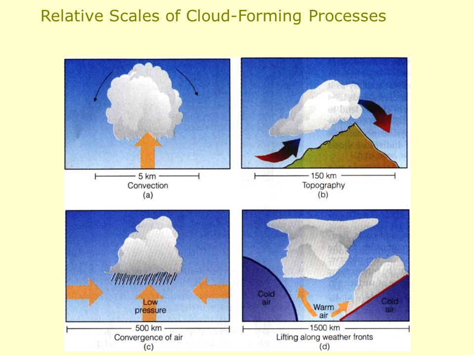 Relative Scales of Cloud-Forming Processes