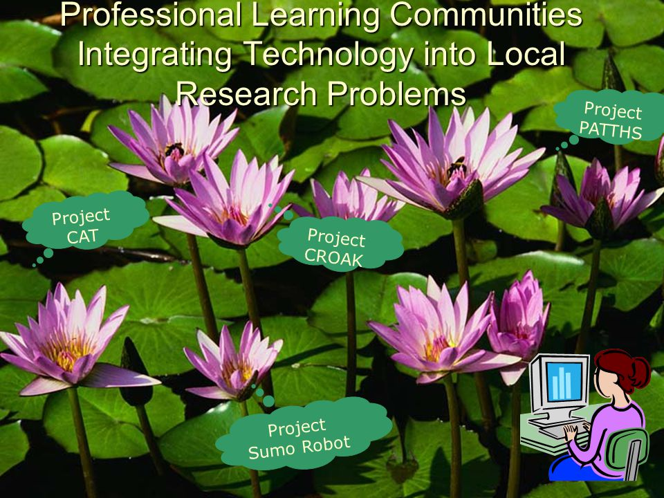 Professional Learning Communities Integrating Technology into Local Research Problems Project CAT Project PATTHS Project CROAK Project Sumo Robot