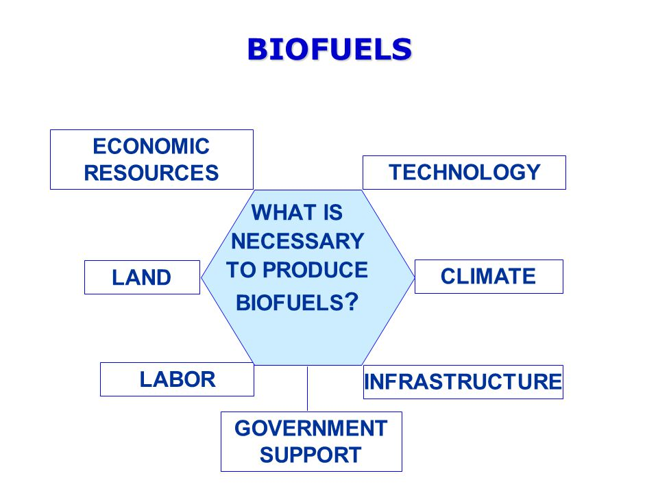BIOFUELS LAND CLIMATE LABOR TECHNOLOGY GOVERNMENT SUPPORT ECONOMIC RESOURCES WHAT IS NECESSARY TO PRODUCE BIOFUELS .
