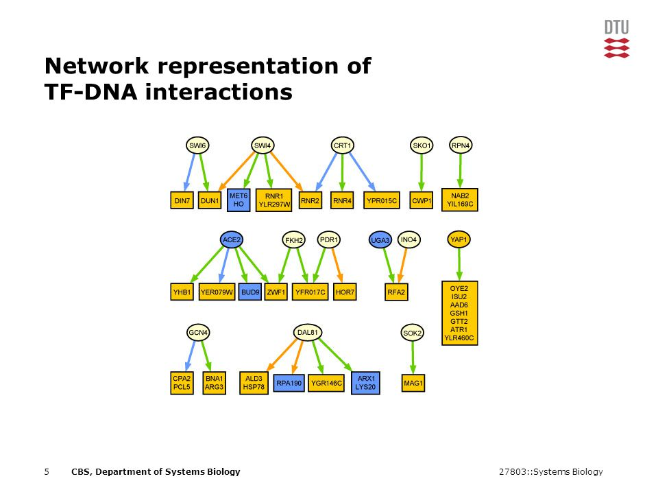 27803::Systems Biology5CBS, Department of Systems Biology Network representation of TF-DNA interactions