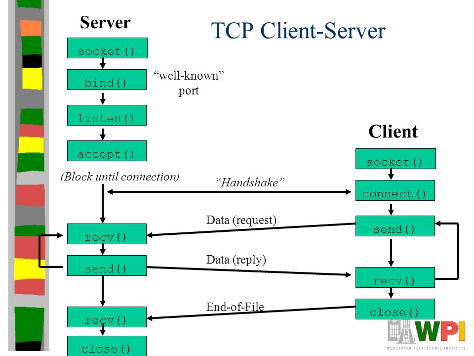 TCP Client-Server socket() bind() listen() accept() Server socket() connect() send() recv() Client (Block until connection ) Handshake recv() send() Data (request) Data (reply) close() End-of-File recv() close() well-known port