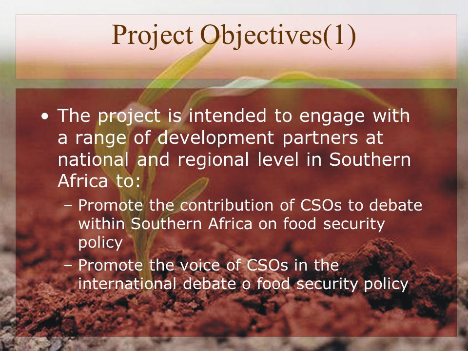 Project Objectives(1) The project is intended to engage with a range of development partners at national and regional level in Southern Africa to: –Promote the contribution of CSOs to debate within Southern Africa on food security policy –Promote the voice of CSOs in the international debate o food security policy