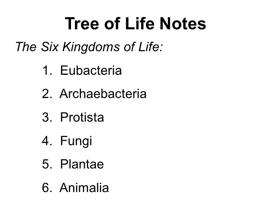 Tree Of Life Notes The Six Kingdoms Of Life