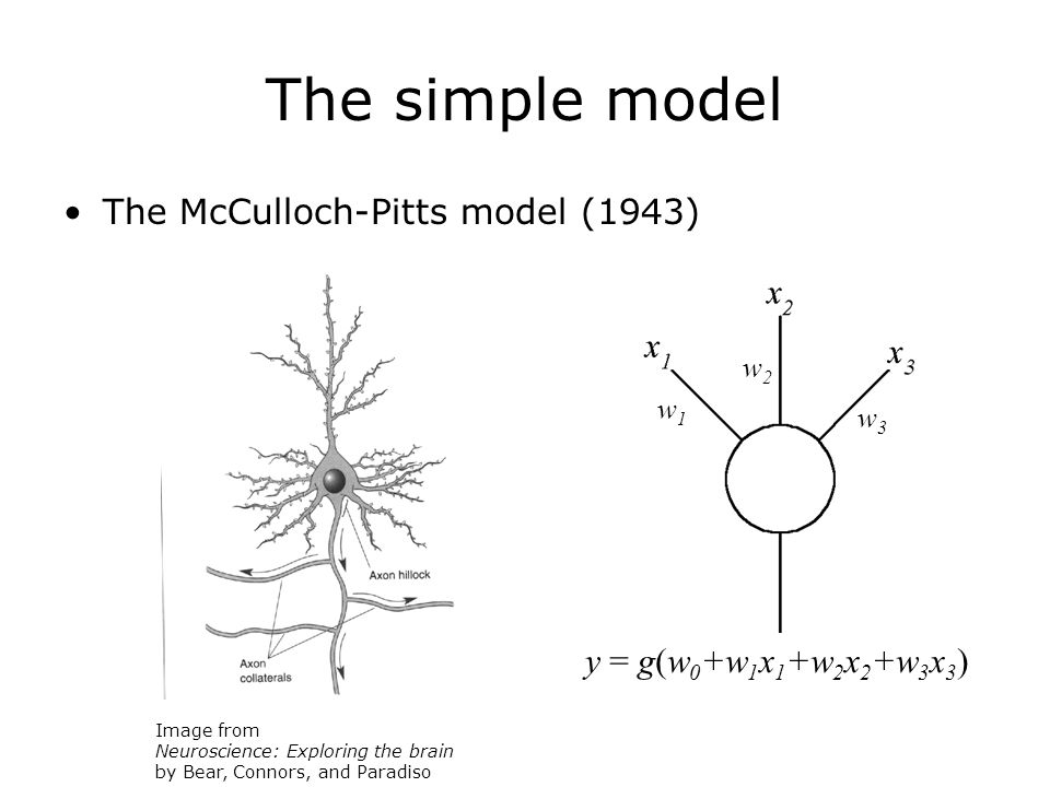 The simple model The McCulloch-Pitts model (1943) Image from Neuroscience: Exploring the brain by Bear, Connors, and Paradiso y = g(w 0 +w 1 x 1 +w 2 x 2 +w 3 x 3 ) w1w1 w2w2 w3w3