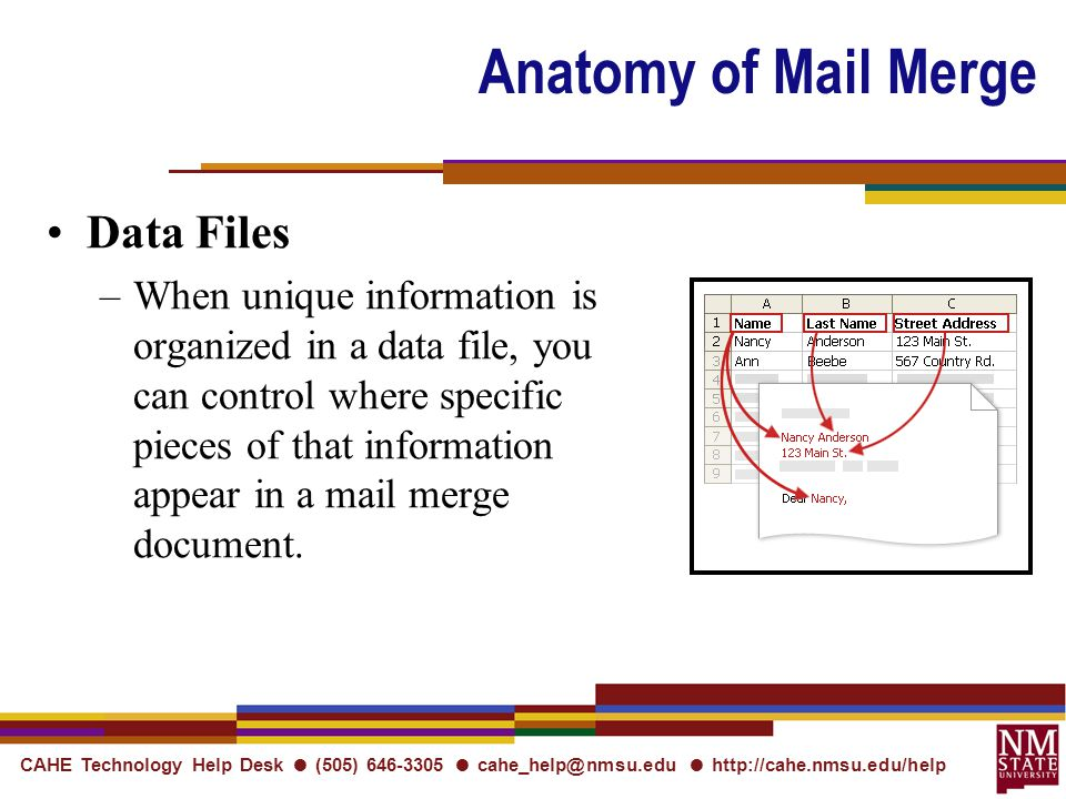 CAHE Technology Help Desk ● (505) ● ●   Anatomy of Mail Merge Data Files –When unique information is organized in a data file, you can control where specific pieces of that information appear in a mail merge document.