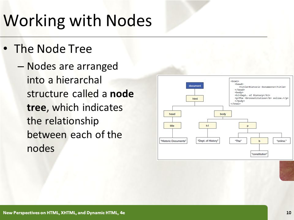 XP New Perspectives on HTML, XHTML, and Dynamic HTML, 4e10 Working with Nodes The Node Tree – Nodes are arranged into a hierarchal structure called a node tree, which indicates the relationship between each of the nodes