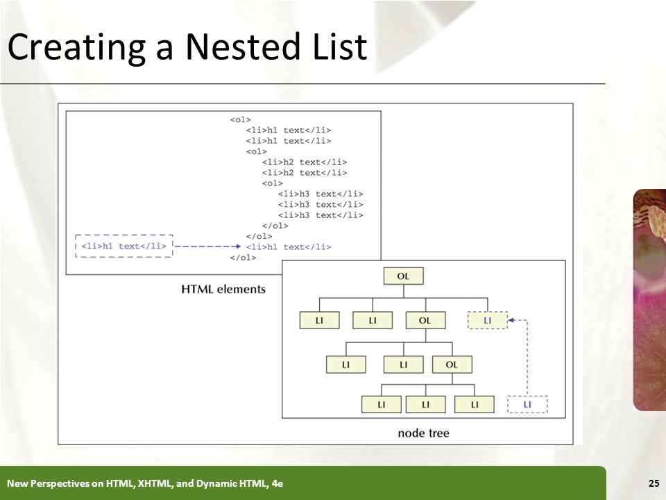 XP Creating a Nested List New Perspectives on HTML, XHTML, and Dynamic HTML, 4e25