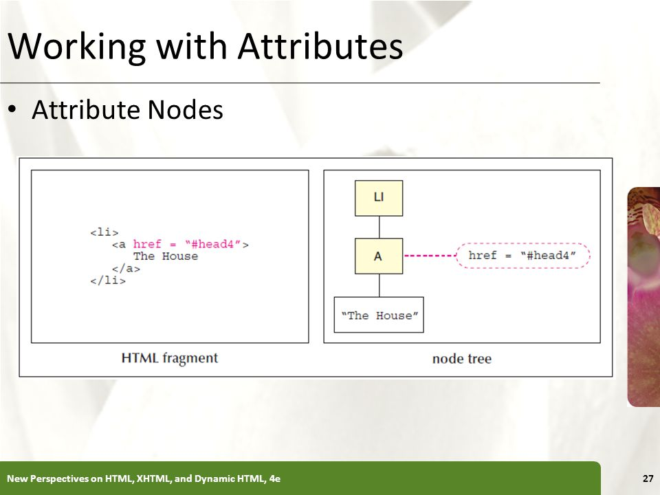 XP Working with Attributes Attribute Nodes New Perspectives on HTML, XHTML, and Dynamic HTML, 4e27