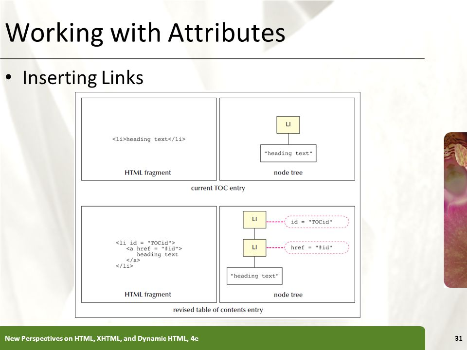 XP Working with Attributes Inserting Links New Perspectives on HTML, XHTML, and Dynamic HTML, 4e31