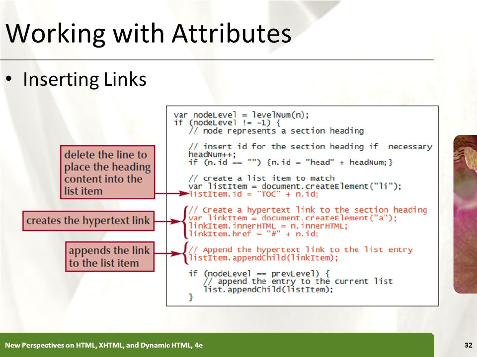 XP Working with Attributes Inserting Links New Perspectives on HTML, XHTML, and Dynamic HTML, 4e32