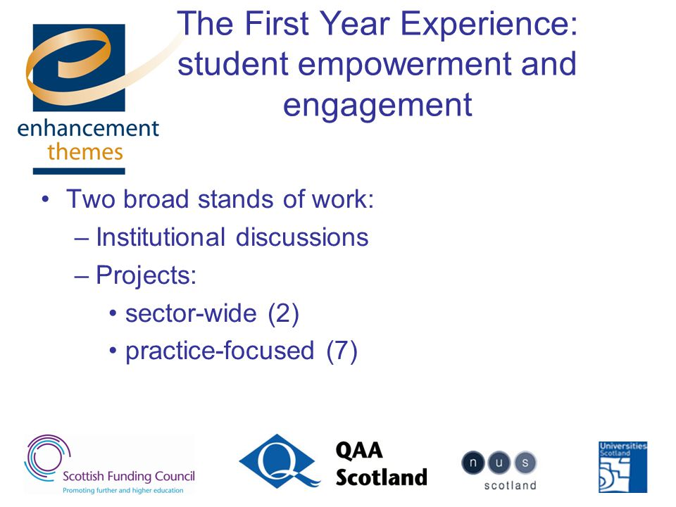 The First Year Experience: student empowerment and engagement Two broad stands of work: –Institutional discussions –Projects: sector-wide (2) practice-focused (7)