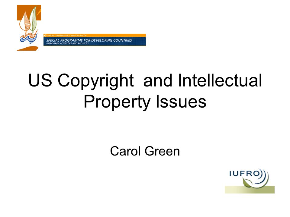 US Copyright and Intellectual Property Issues Carol Green