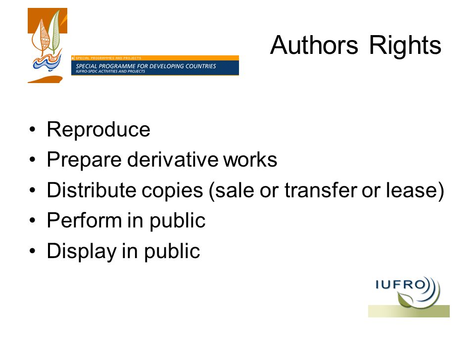 Authors Rights Reproduce Prepare derivative works Distribute copies (sale or transfer or lease) Perform in public Display in public
