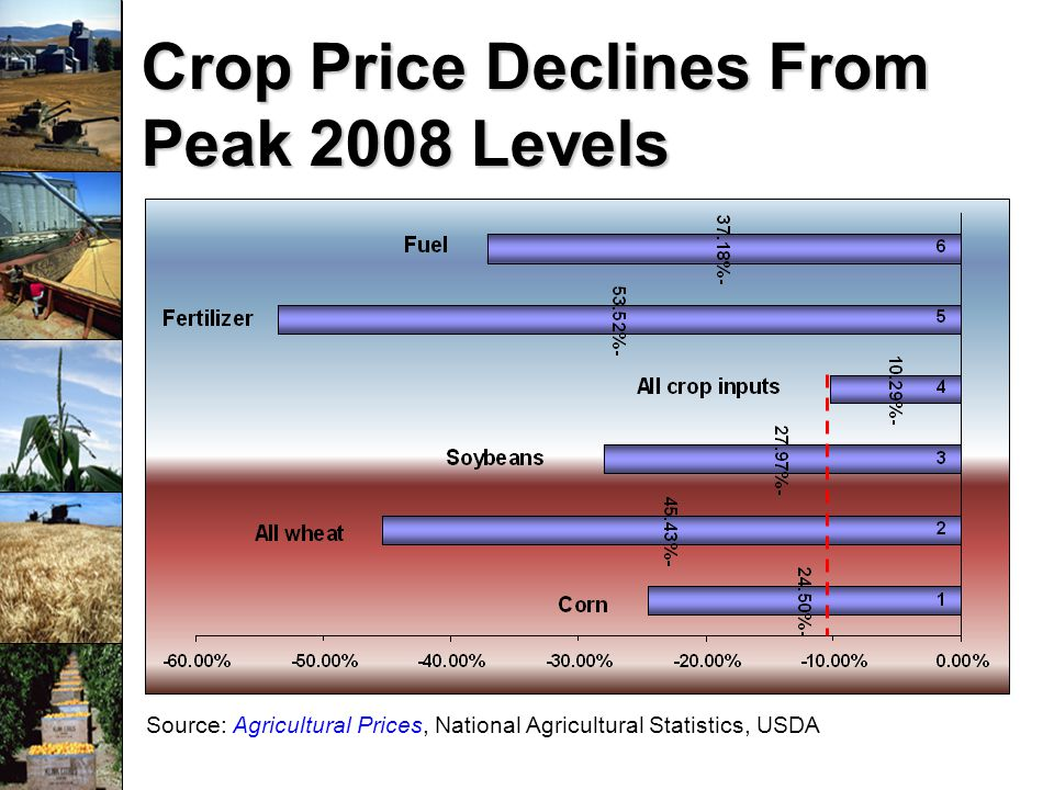 Source: Agricultural Prices, National Agricultural Statistics, USDA Crop Price Declines From Peak 2008 Levels