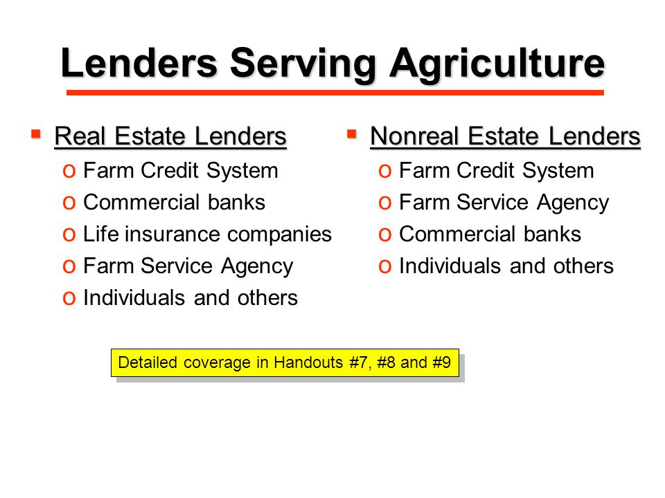 Lenders Serving Agriculture  Real Estate Lenders o Farm Credit System o Commercial banks o Life insurance companies o Farm Service Agency o Individuals and others  Nonreal Estate Lenders o Farm Credit System o Farm Service Agency o Commercial banks o Individuals and others Detailed coverage in Handouts #7, #8 and #9